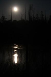 moon over Shalda creek