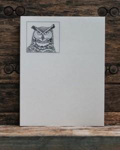 Abraham's owl