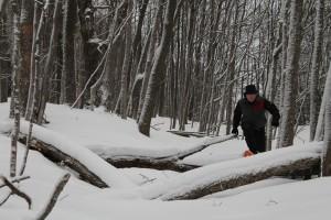 hike with Jim 2