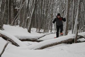 hike with Jim 5